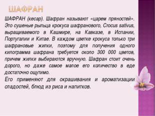 ШАФРАН (кесар). Шафран называют «царем пряностей». Это сушеные рыльца крокуса