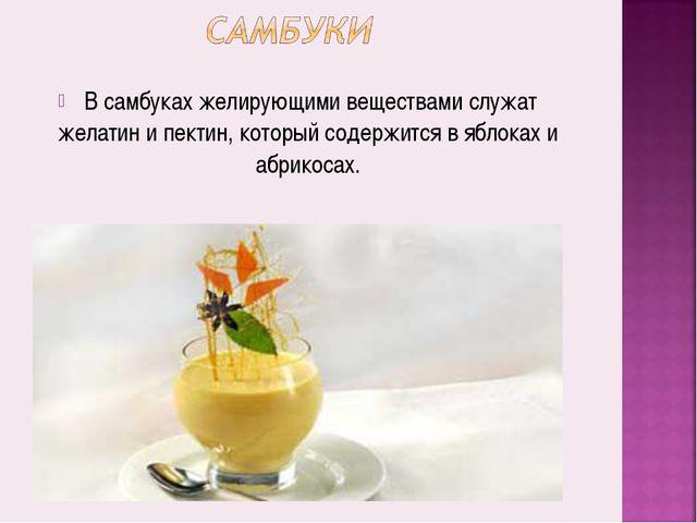 В самбуках желирующими веществами служат желатин и пектин, который содержитс...