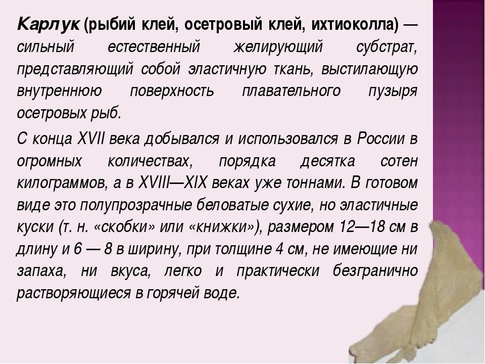 Карлук(рыбий клей, осетровый клей, ихтиоколла)— сильный естественный желиру...