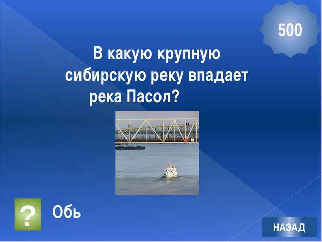 Этот памятник находится в городе - герое Волгограде. Назовите его НАЗАД 400 ?...