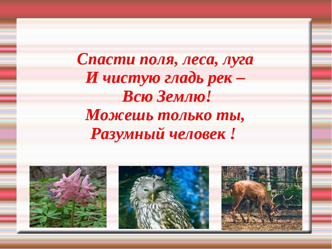 Спасти поля, леса, луга И чистую гладь рек – Всю Землю! Можешь только ты, Раз...