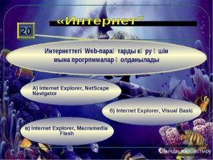 в) Internet Explorer, Macramedia Flash б) Internet Explorer, Visual Basic А)