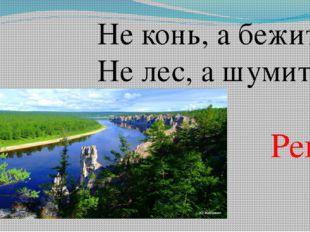 Не конь, а бежит, Не лес, а шумит. Река
