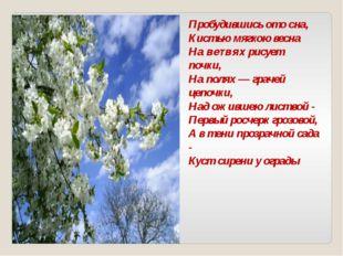 Пробудившись ото сна, Кистью мягкою весна На ветвях рисует почки, На полях —