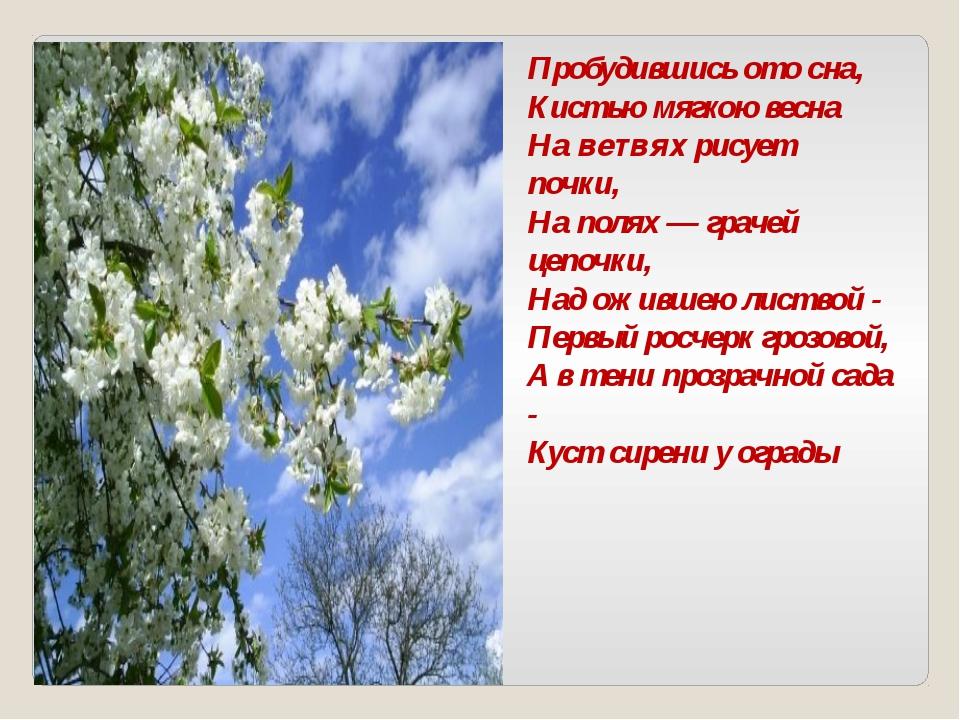 Пробудившись ото сна, Кистью мягкою весна На ветвях рисует почки, На полях —...