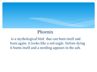 Phoenix is a mythological bird that can burn itself and born again. It looks