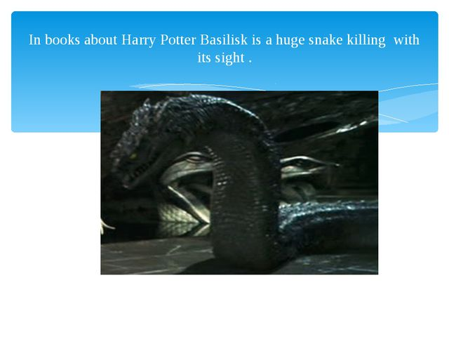 In books about Harry Potter Basilisk is a huge snake killing with its sight .