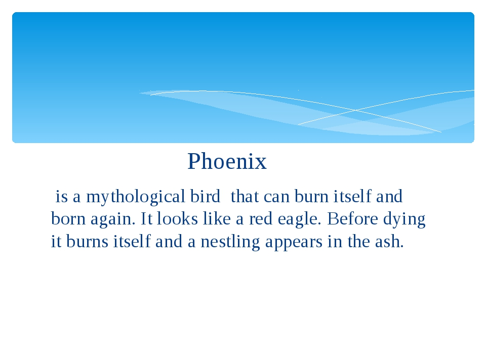 Phoenix is a mythological bird that can burn itself and born again. It looks...