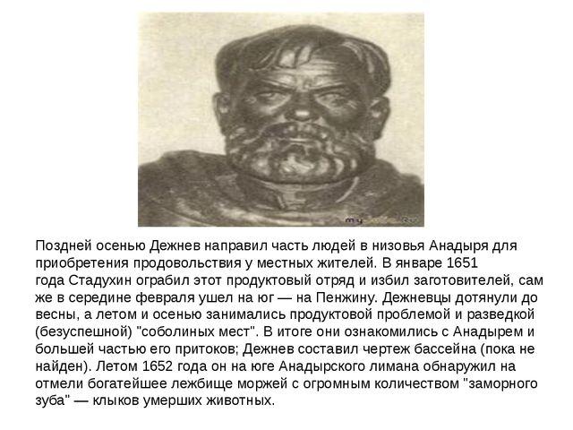 Поздней осенью Дежнев направил часть людей в низовья Анадыря для приобретения...