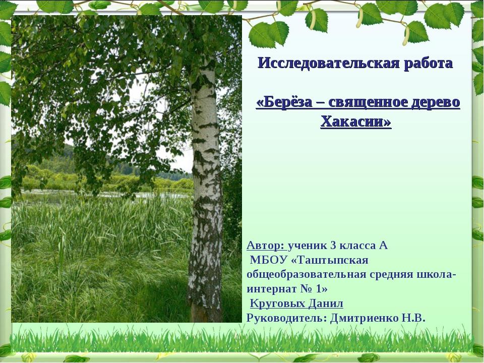 Исследовательская работа «Берёза – священное дерево Хакасии» Автор: ученик 3...