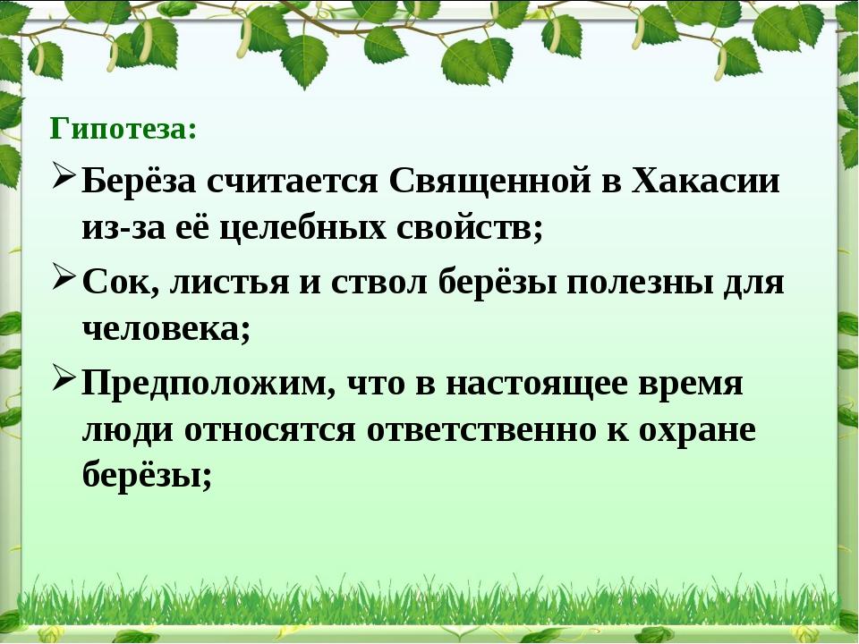 Гипотеза: Берёза считается Священной в Хакасии из-за её целебных свойств; Сок...