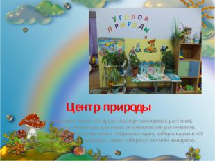 Центр природы Комнатные растения; макет «Огород»; паспорт комнатных растений,