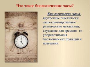 Что такое биологические часы? Биологические часы - внутренние генетически за