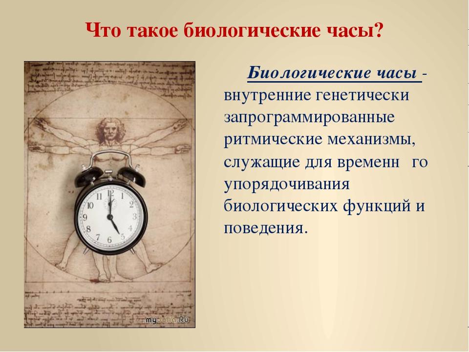 Что такое биологические часы? Биологические часы - внутренние генетически за...
