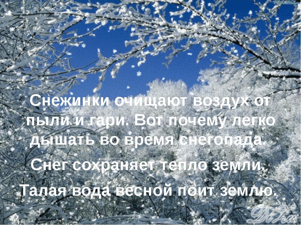 Снежинки очищают воздух от пыли и гари. Вот почему легко дышать во время снег...