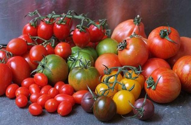В Италии появился новый музей - музей помидоров