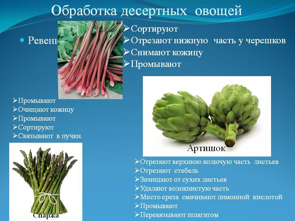 Обработка десертных овощей. Ревень. Сортируют Отрезают нижную часть у черешков Снимают кожицу Промывают. Артишок. Промывают Очищ