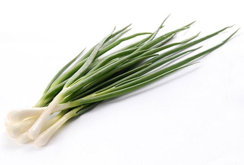 Лук зеленый свежий цена в Московской области Купить лук зеленый свежий Московская область (Россия) недорого оптом или в розницу