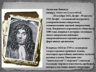 Антон ван Левенгук (нидерл. Antoni van Leeuwenhoek, 24 октября 1632, Делфт –