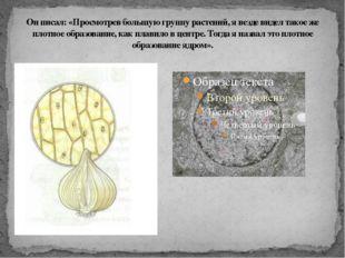 Он писал: «Просмотрев большую группу растений, я везде видел такое же плотное