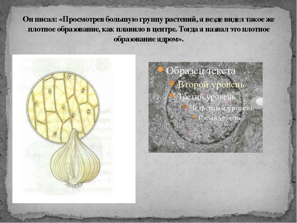 Он писал: «Просмотрев большую группу растений, я везде видел такое же плотное...