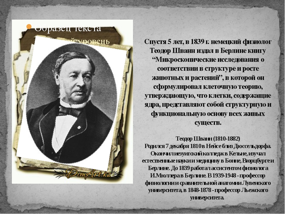 Спустя 5 лет, в 1839 г. немецкий физиолог Теодор Шванн издал в Берлине книгу...