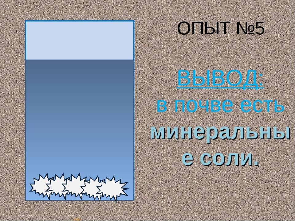 ОПЫТ №5 ВЫВОД: в почве есть минеральные соли.