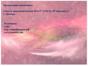 Презентацию подготовила учитель начальной школы МАОУ СОШ № 29 Тюклина Е.С. г.