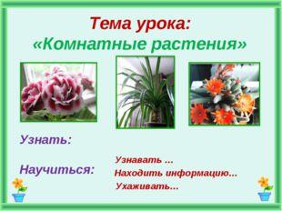Тема урока: «Комнатные растения» Узнать: Научиться: Узнавать … Находить инфор