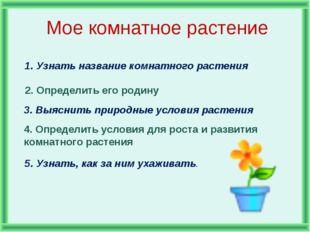 Мое комнатное растение 1. Узнать название комнатного растения 2. Определить е