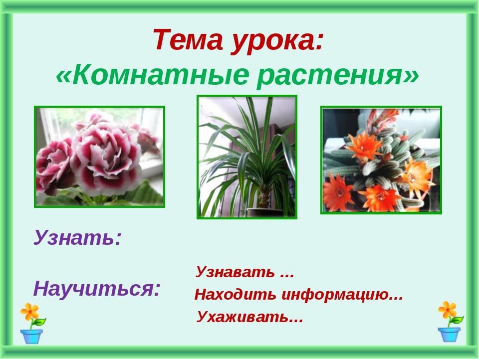 Тема урока: «Комнатные растения» Узнать: Научиться: Узнавать … Находить инфор...