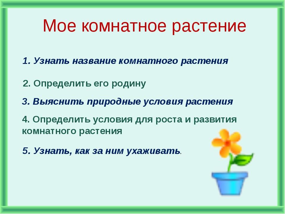 Мое комнатное растение 1. Узнать название комнатного растения 2. Определить е...