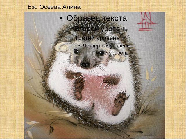 Еж. Осеева Алина