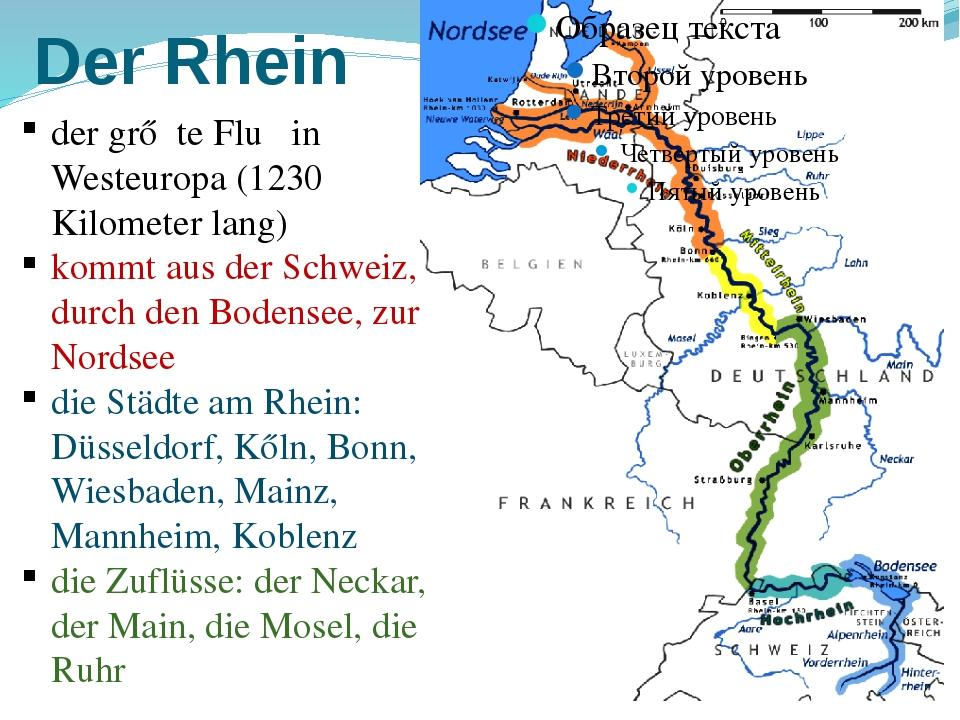 Der Rhein der grőβte Fluβ in Westeuropa (1230 Kilometer lang) kommt aus der S...