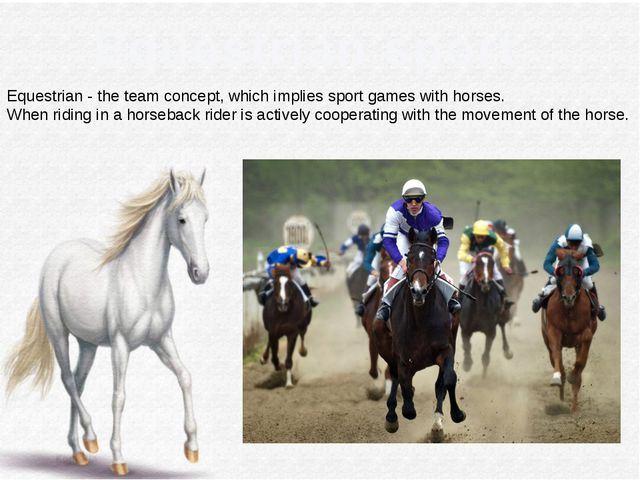 Equestrian sport Equestrian - the team concept, which implies sport games wi...