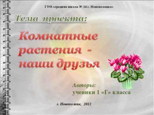 Авторы: ученики 1 «Г» класса ГУО «средняя школа № 14 г. Новополоцка» г. Новоп