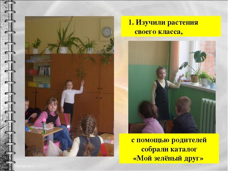 1. Изучили растения своего класса, с помощью родителей собрали каталог «Мой...