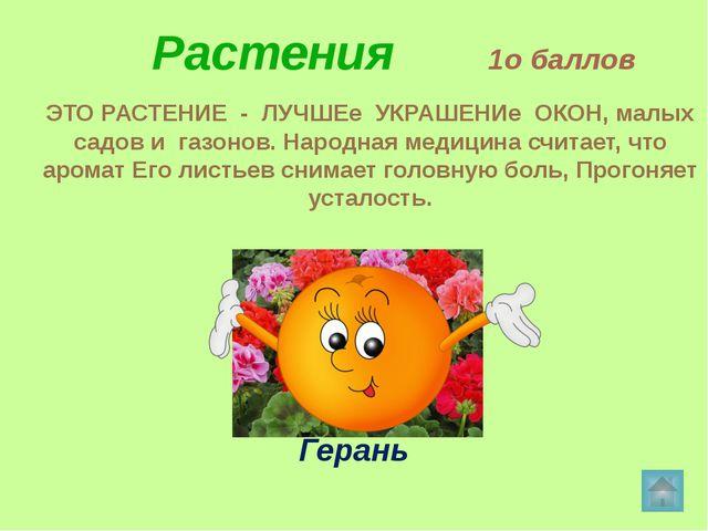 Растения 3о баллов Этот цветок неотделим от русской природы. С ранней весны...