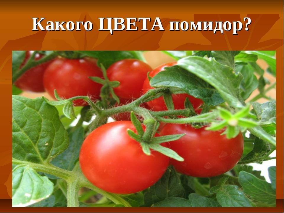 Какого ЦВЕТА помидор?