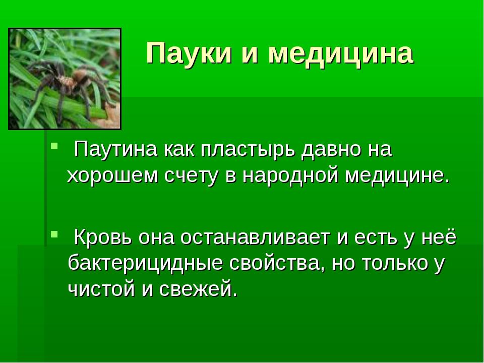 Пауки и медицина Паутина как пластырь давно на хорошем счету в народной меди...