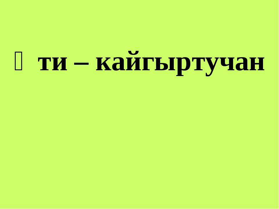 Әти – кайгыртучан