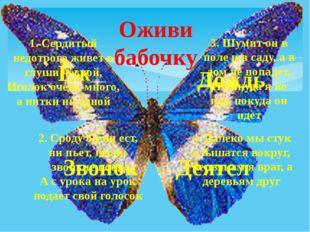 Оживи бабочку 1. Сердитый недотрога живет в глуши лесной, Иголок очень много