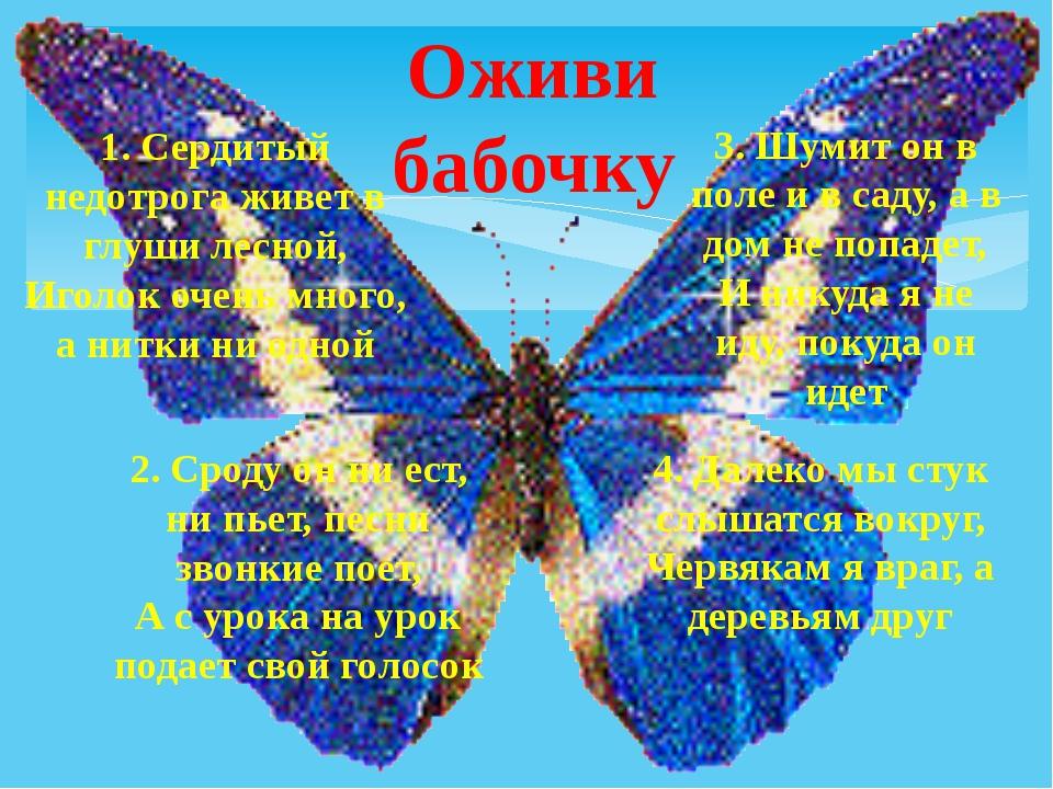 Оживи бабочку 1. Сердитый недотрога живет в глуши лесной, Иголок очень много...