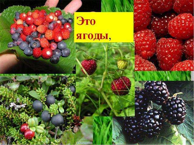 Это ягоды,
