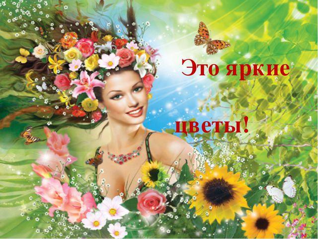 Это яркие цветы!
