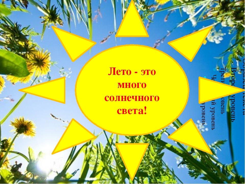 Лето - это много солнечного света!
