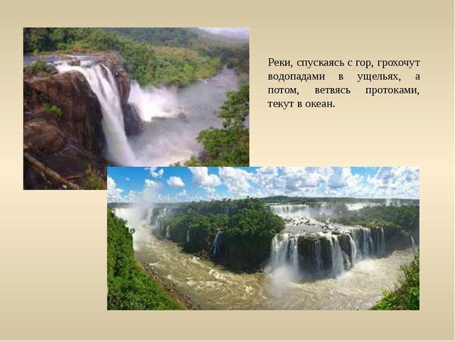 Реки, спускаясь с гор, грохочут водопадами в ущельях, а потом, ветвясь проток...