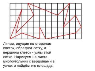 Линии, идущие по сторонам клеток, образуют сетку, а вершины клеток - узлы это