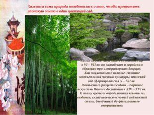 Кажется сама природа позаботилась о том, чтобы превратить японскую землю в од