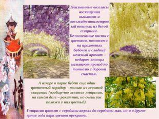 Неизменные возгласы восхищения вызывает и восьмидесятиметровый тоннель из бел